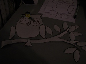 Sorry its dark - but owl pices