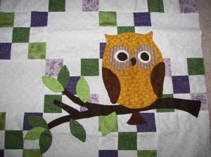 Owl finally sewn on - thanks mom!